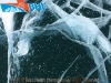Ice treasure Baikal 2017_wm